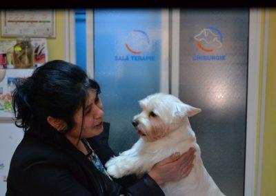 frizerie canina in Navodari - CertoVet.ro 034